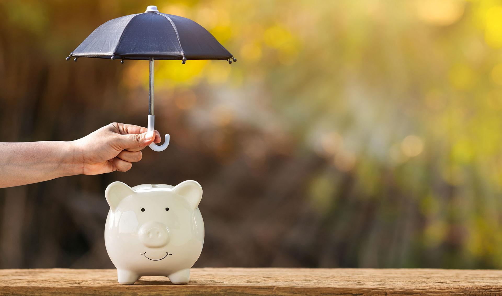 Assicurazione del credito